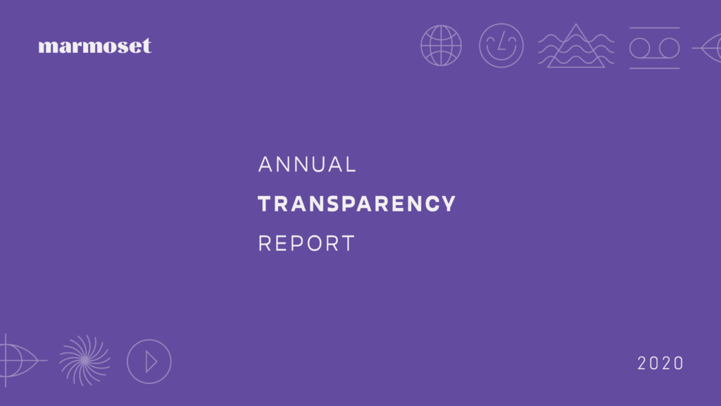 Marmoset's 2020 Annual Transparency Report